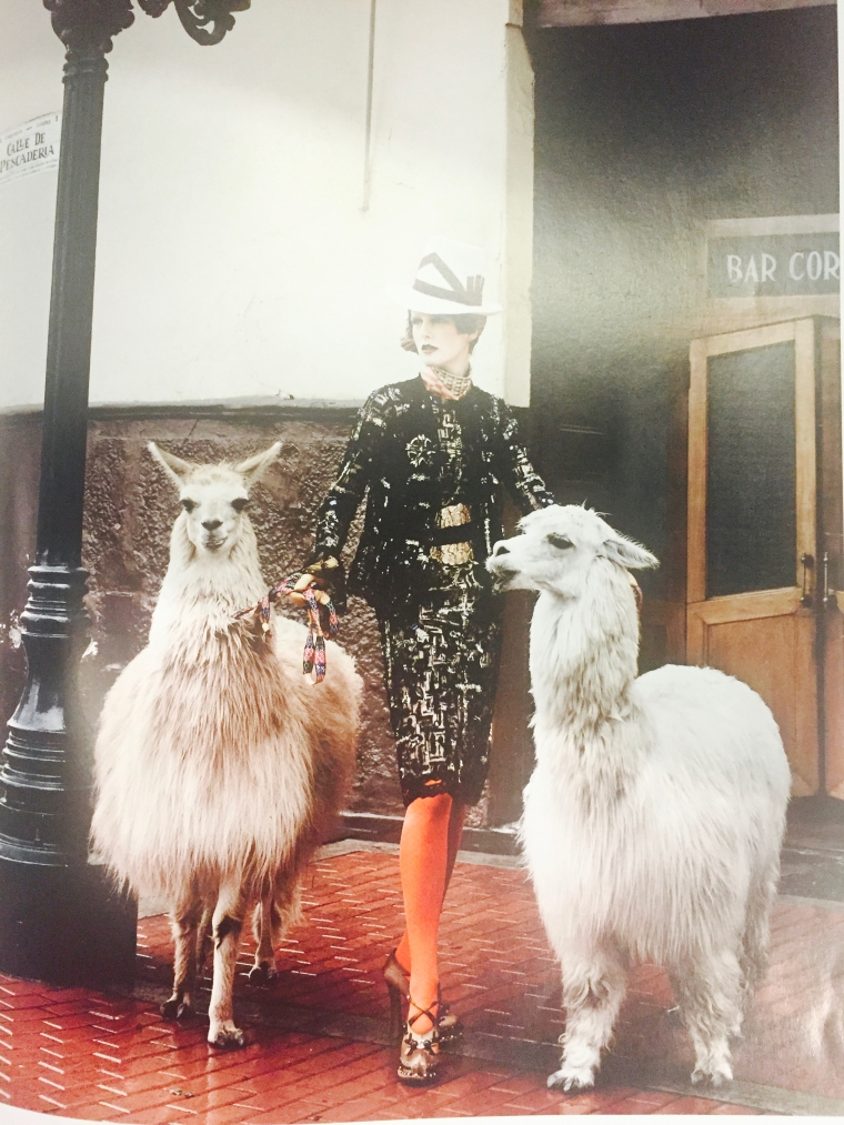 Fashion and Alpacas - yes!